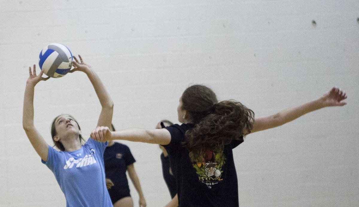 Horizon Honors Volleyball