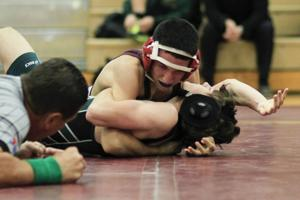 Wrestling: MP vs Basha