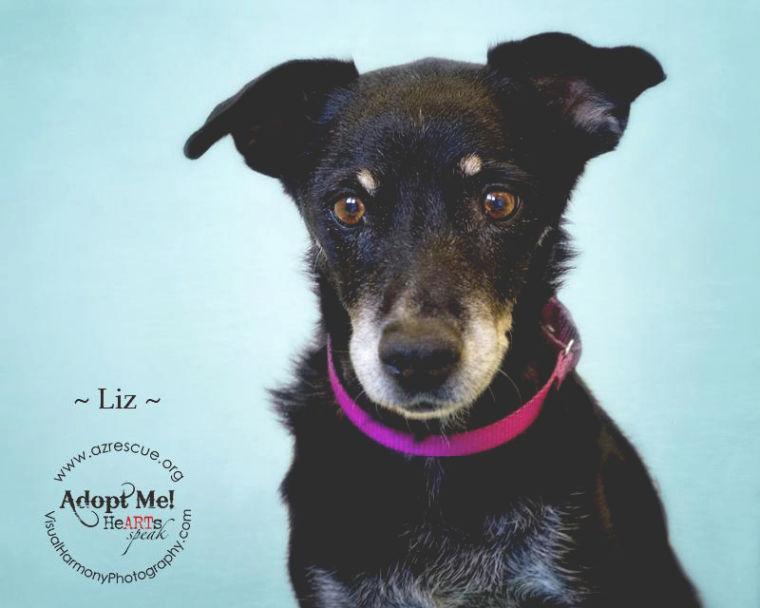 Someone to love: Liz