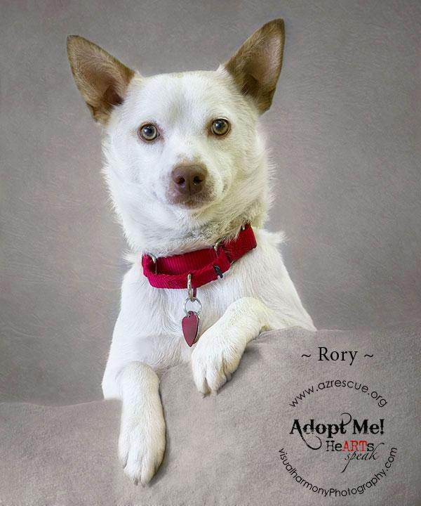 Someone to love: Rory