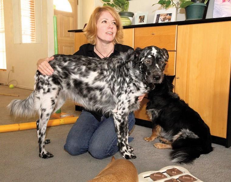 afn.112410.com.dogbiz5.jpg