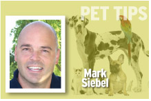 Pet Tips Mark Siebel