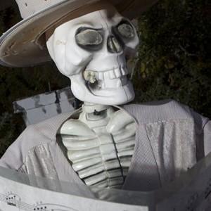 Halloween Display in Ahwatukee