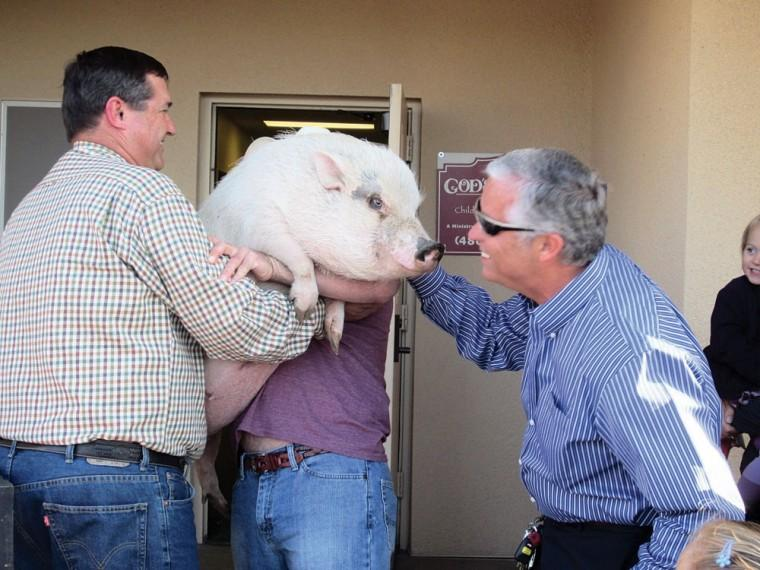 Ron Hawkins kisses a pig