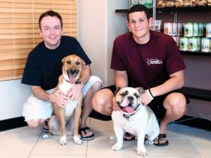 Q&A with Foothills Pet Resort
