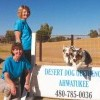 Best pet training: Desert Dog Obedience Ahwatukee