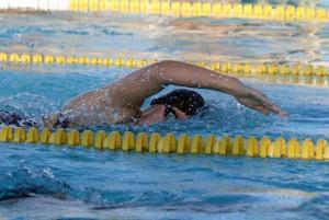 afn.swim1.jpg