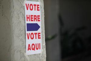 Primary Election 2010