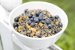 Herbed wild rice salad with apricots and blueberries