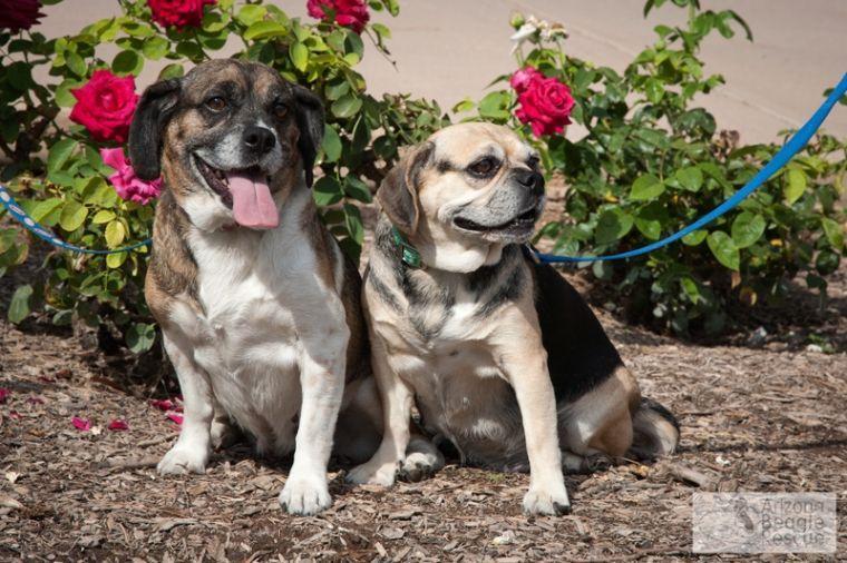 Someone to love: Kaylie and Keykie