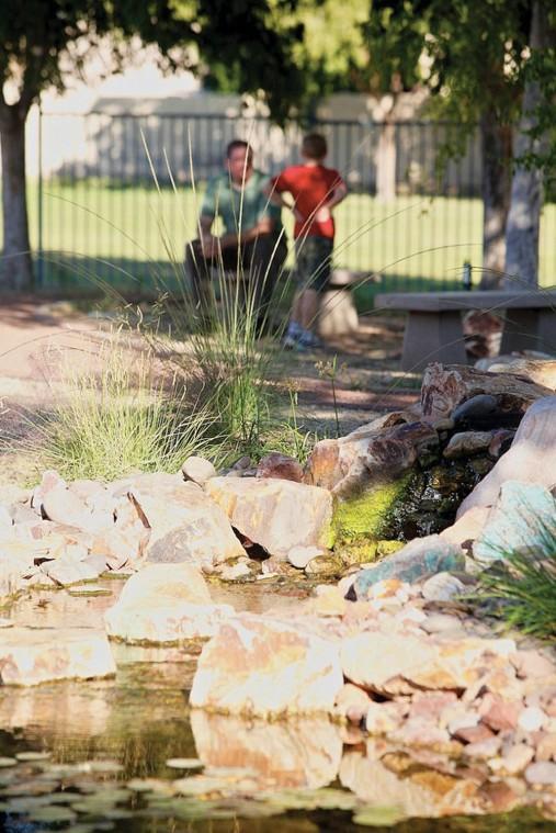 afn.110510.com.Garden5.jpg