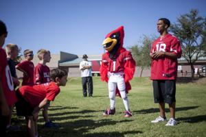 Cardinals at Horizon
