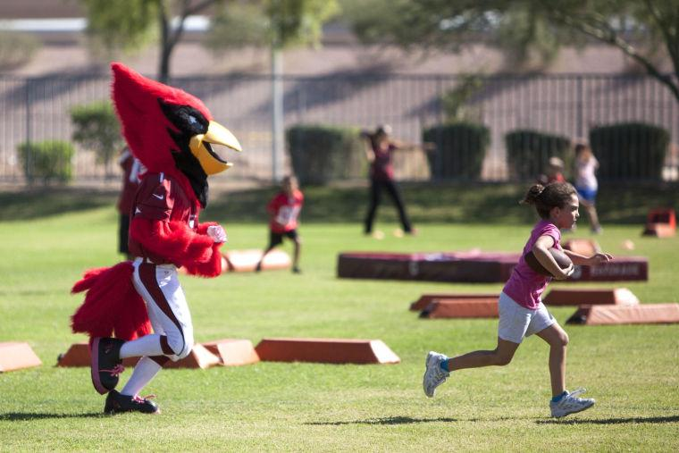 Cardinals at Horizon