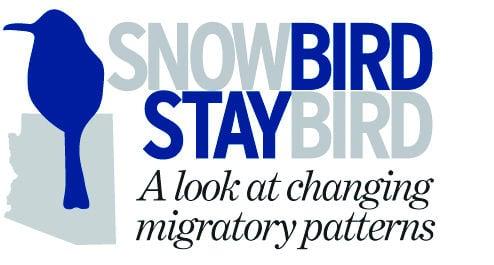 Snowbird staybird
