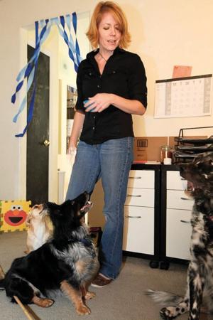 afn.112410.com.dogbiz3.jpg