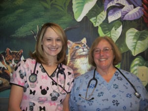 Ahwatukee Commons Veterinary Hospital
