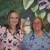 Best veterinarian: Ahwatukee Commons Veterinary Hospital