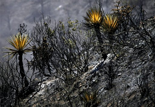 Arizona wildfires - Ahwatukee Foothills News: Valley And State