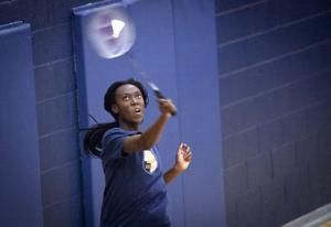 DV Badminton
