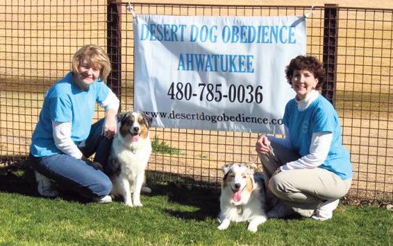 Best Pet Training 2009