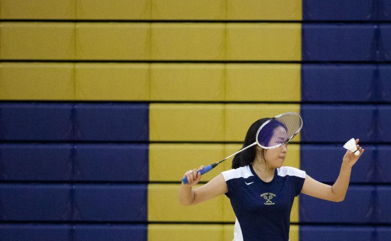 Badminton: DV vs MP