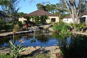 Spring Homes-Backyard Ponds