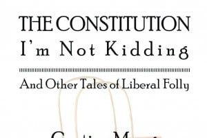 The Constitution I'm Not Kidding