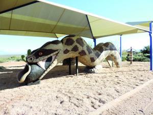 Rattlesnake Slide