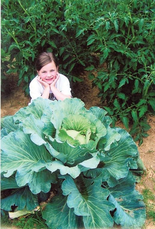 Bonnie Plants' 3rd Grade Cabbage Program
