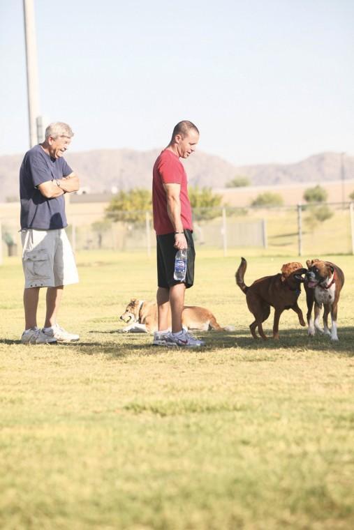 afn.100610.com.dogpark3.jpg