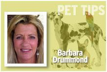 Pet Tips Barbara Drummond