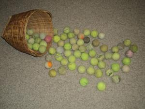 Buddy's tennis balls