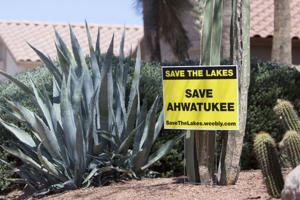 Save the Lakes