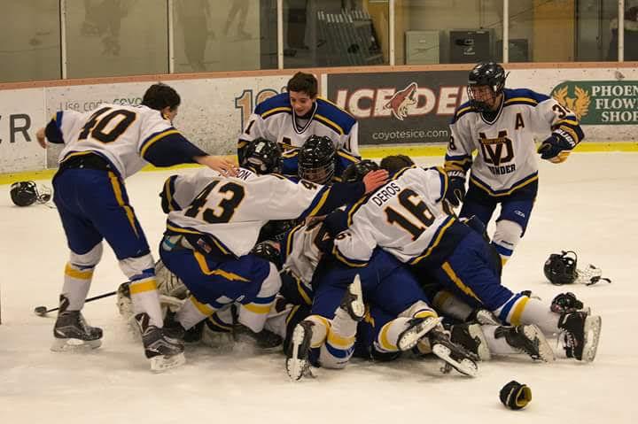 Desert Vista wins hockey title