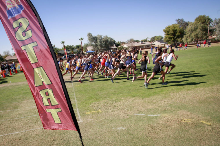Cross Country: D-IV State