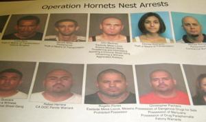 Operation Hornets Nest
