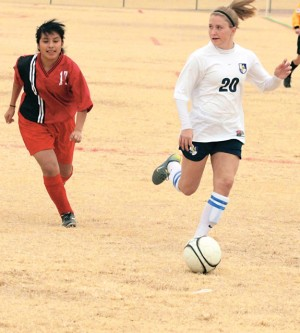 Steuber makes her living by hanging under the radar for DV defense