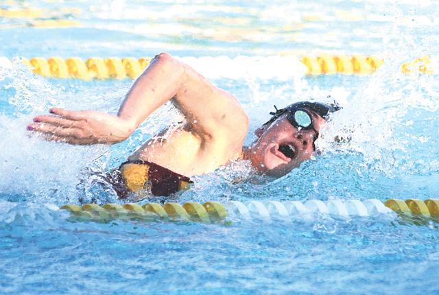Veteran, rookie head for state swim finals