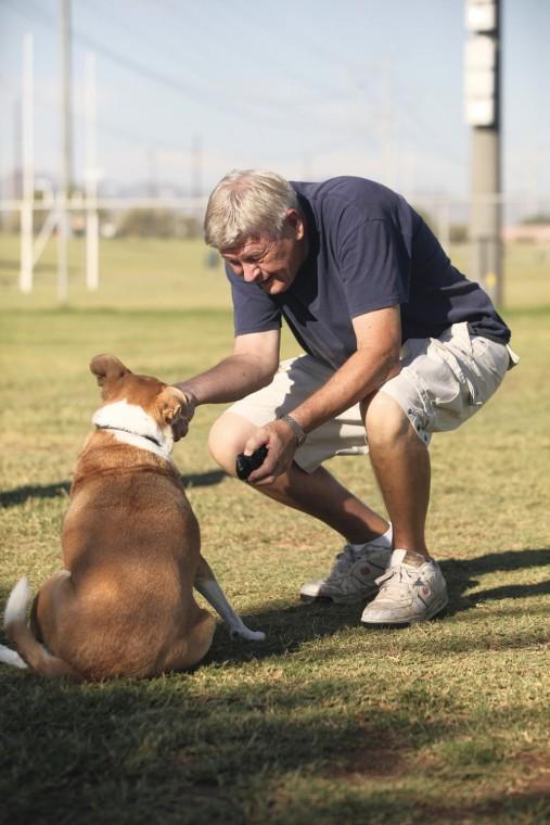 afn.100610.com.dogpark1.jpg