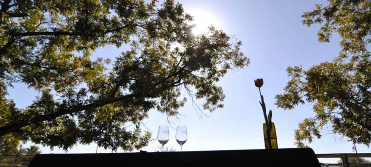 afn.102910.arts.winegetaway6.jpg