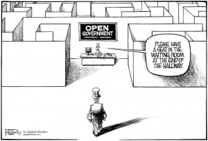 afn.012012.oped.cartoon.jpg