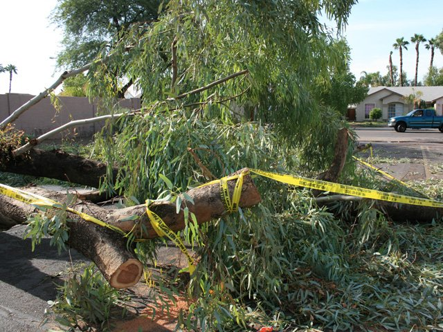 East Valley cleans up after monster storm