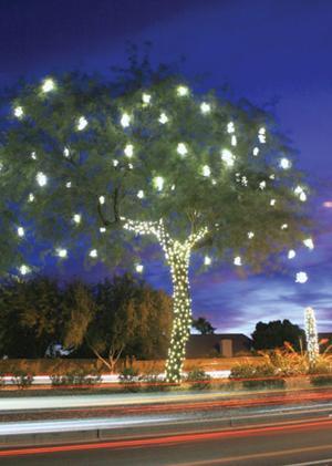 Festival of Lights kicks off this Saturday