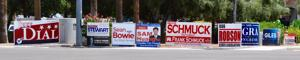 <p>Election signs on the northeast corner of Kyrene and Ray Roads in Chandler</p>