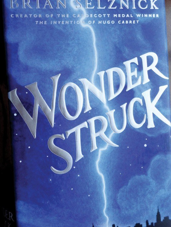 Wonderstruck by Brian Zelnick