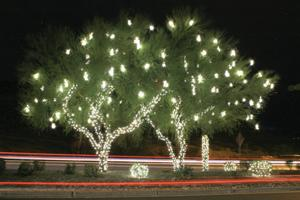 FOL Holiday Hayrides and Luminary Hike are back
