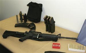 Border gun checks