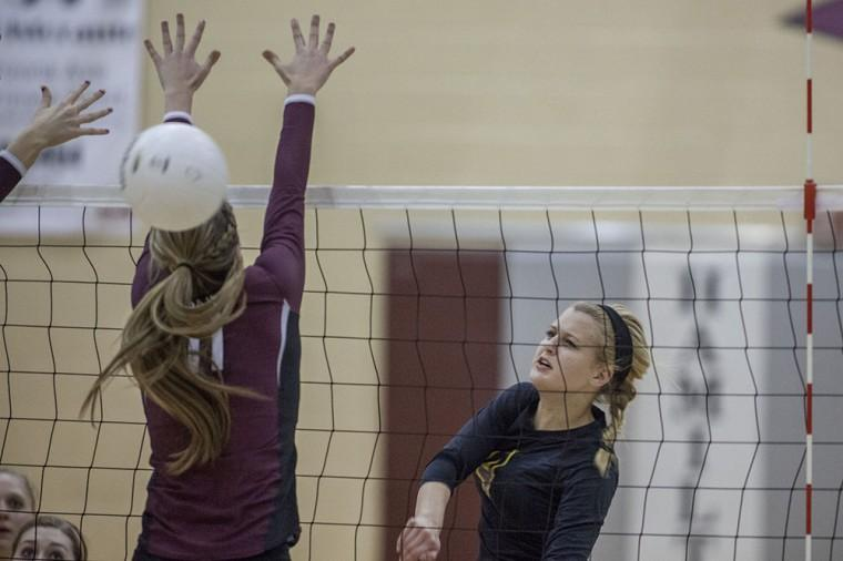 Volleyball: MP vs Hamilton