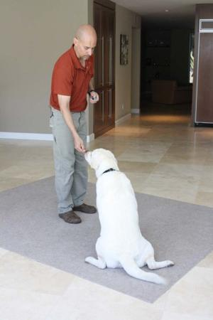 Dogological Home Dog Teaching Program