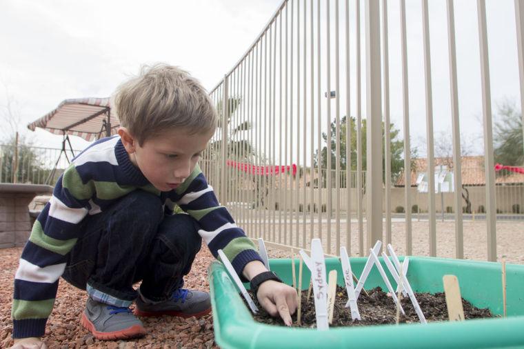 Garden at Children of Hope